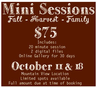 2014 MINI SESSION CLICK ON THE FLYER TO SELECT YOUR SESSION TIME AND DATE